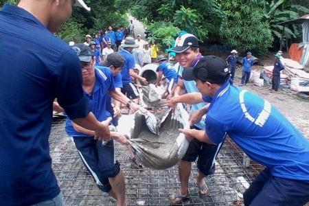 """Student's Volunteer Activities """"Green Summer Campaign"""""""